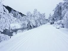 14.12.17 – 20 km Loipe sind bereits offen!